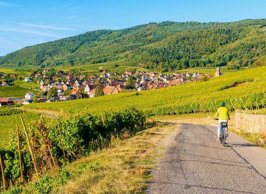 Cycling near Riquewihr