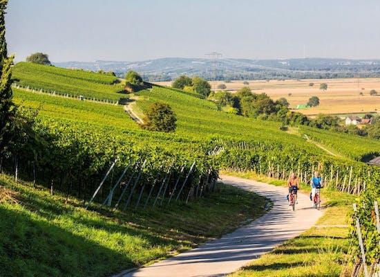 Cycling in the Breisgau